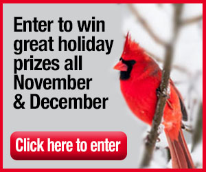 hudson valley parent, contests, win kids things, holiday contests, holiday fun contests