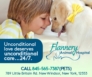 Flannery Animal Hospital, New York, Hudson Valley, Animal Hospital, Vet