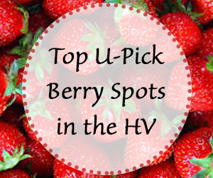 berry picking spots