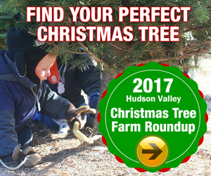 Find your xmas tree farms
