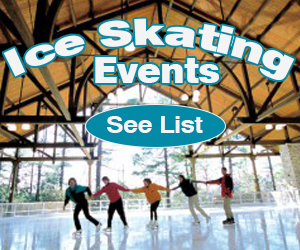 Ice Skating Events 01-2018
