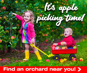 Apple Picking OCT 18