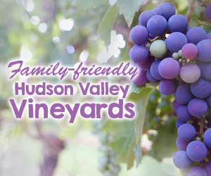 Kid-Friendly Wineries in the Hudson Valley