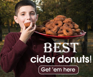 Best places to get cider donuts in the Hudson Valley