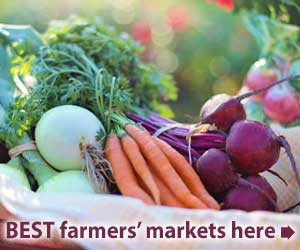 Best farm markets in the Hudson Valley