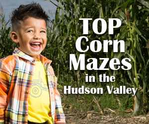Top corn mazes in the Hudson Valley