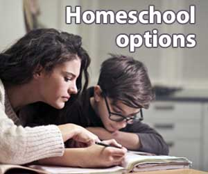 More than one way to homeschool