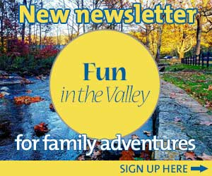New newsletter signup Fun in the Valley