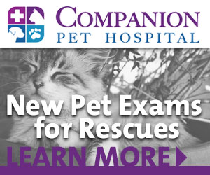 Companion Pet Hospital Apr21