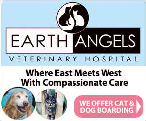 Earth Angels Veterinary Hospital Apr21
