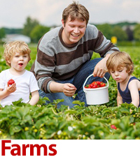 Family-friendly farms