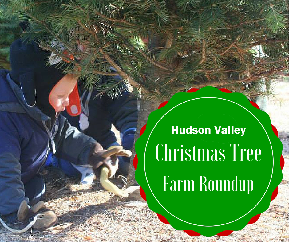 Christmas Tree Farms of the Hudson Valley