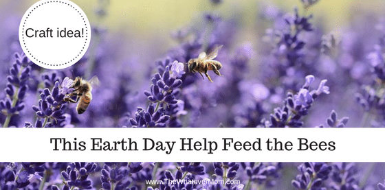 Earth Day 2018, Earth day activities, Fun for Earth day, seeds, growing in the hudson valley, planting seeds, create a wildflower garden, easy craft idea for earth day, easy kids craft