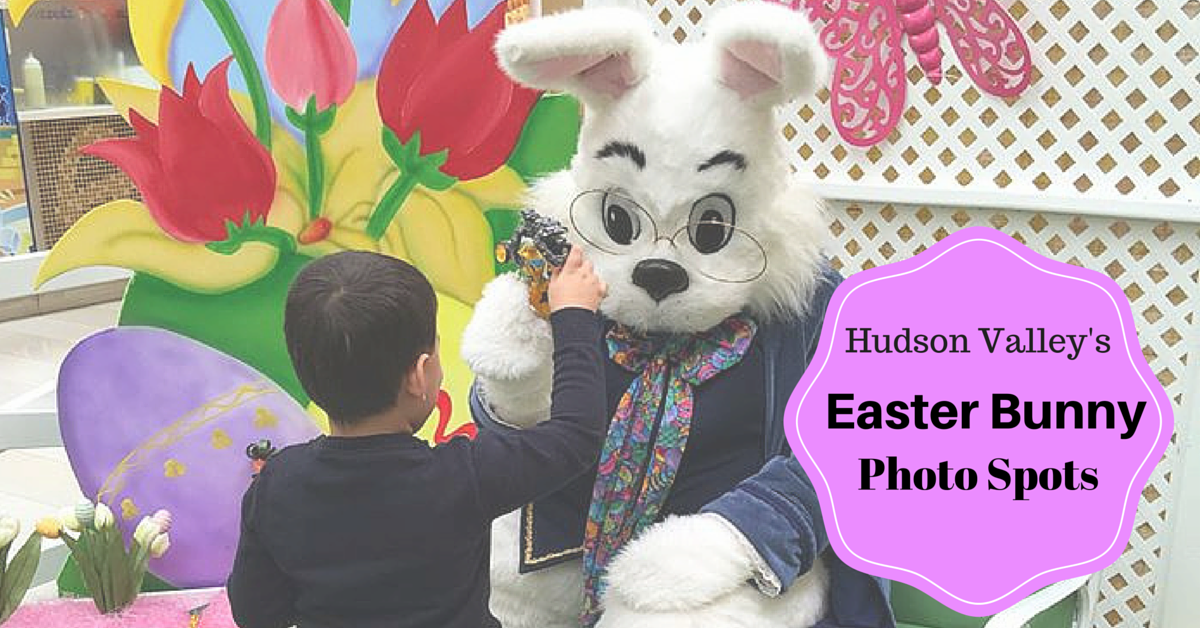 Easter Bunny photos in the hudson valley