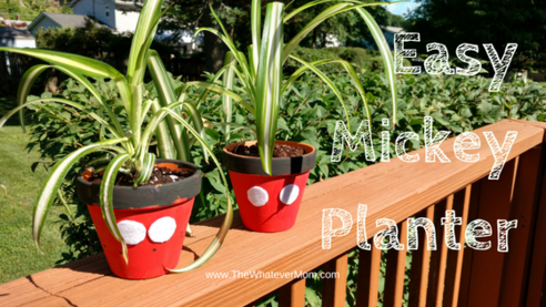 Easy mickey planters