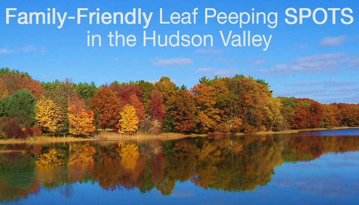 Hudson Valley Leaf Peeping with Kids