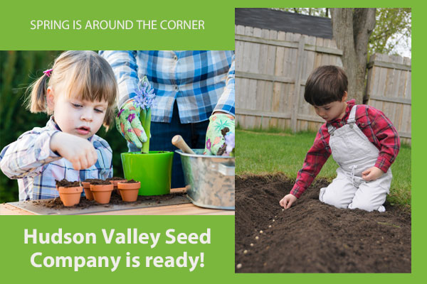 Hudson Valley Seed Company is ready for spring planting