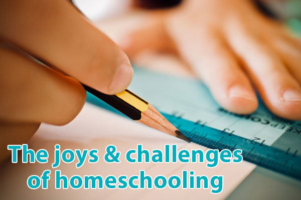 Hudson Valley, homeschool, education
