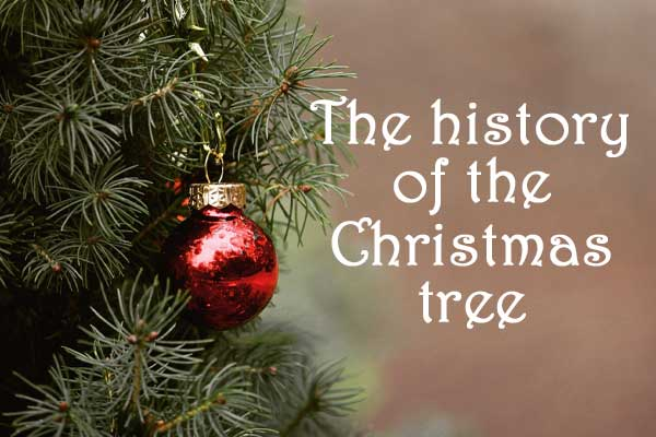 The tradition of the Christmas tree