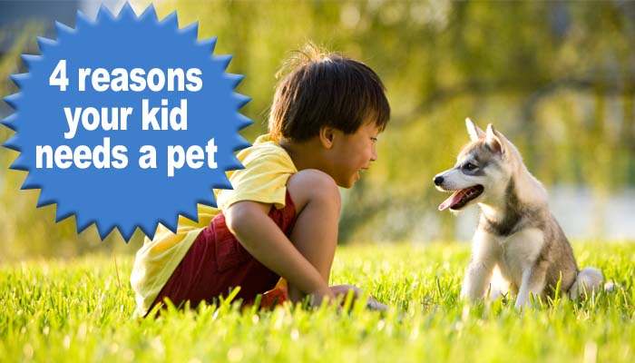 benefits of getting kids a pet