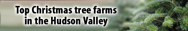 Hudson Valley Christmas Tree Farms