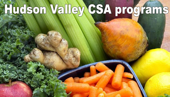 hudson valley csa programs listed by county
