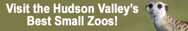 hudson valley zoos