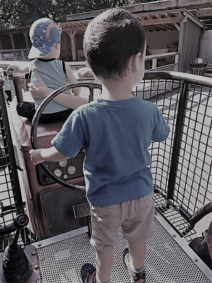sensory processing, autism, awareness, parenting, carousel, bronx zoo