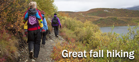Enjoy the cooler weather and go on a family hike