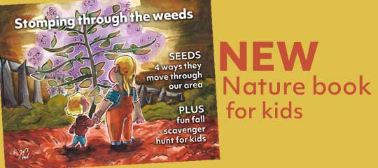 Discover local book series for kids about nature. Plus a fun scavenger hunt.